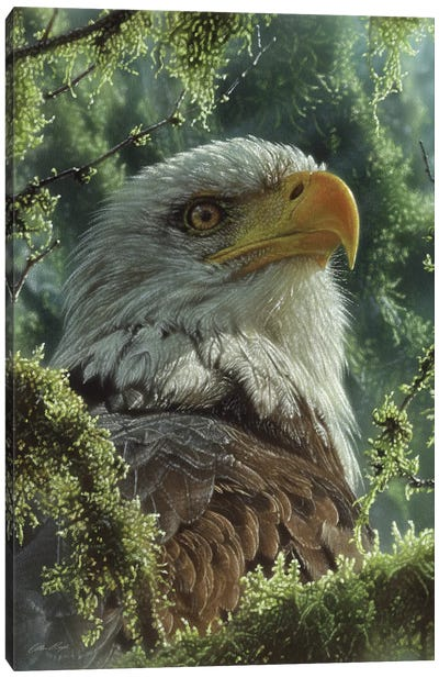 Bald Eagle - High And Mighty - Vertical Canvas Art Print