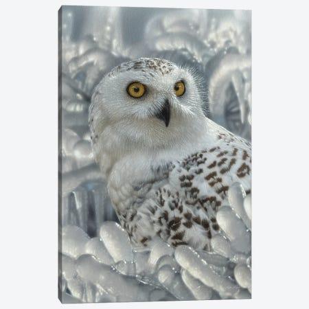 Snowy Owl Sanctuary - Vertical Canvas Print #CBO160} by Collin Bogle Canvas Artwork