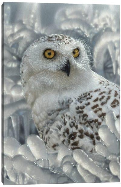 Snowy Owl Sanctuary - Vertical Canvas Art Print