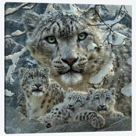 Snow Leopard Collage Canvas Print #CBO162} by Collin Bogle Canvas Wall Art