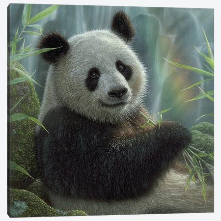 Panda Paradise - Square Canvas Print #CBO164} by Collin Bogle Canvas Print
