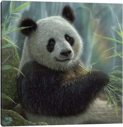 Panda Paradise - Square Canvas Art Print
