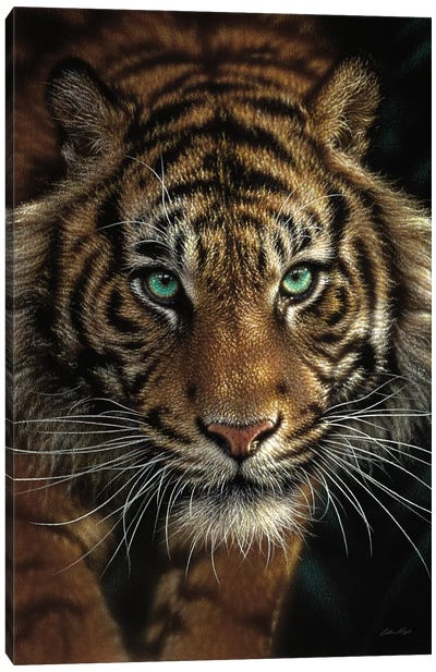 Eye Of The Tiger, Vertical Canvas Art Print