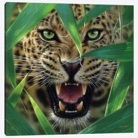 Jaguar Ambush, Square Canvas Print #CBO2} by Collin Bogle Canvas Artwork