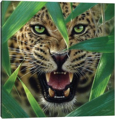 Jaguar Ambush, Square Canvas Art Print