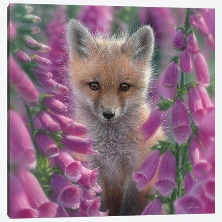 Foxgloves - Red Fox, Square Canvas Print #CBO30} by Collin Bogle Canvas Wall Art