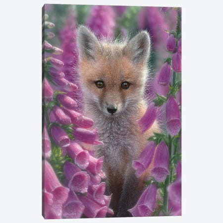 Foxgloves - Red Fox, Vertical Canvas Print #CBO31} by Collin Bogle Canvas Wall Art