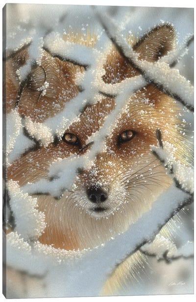 Hide And Seek - Red Fox, Vertical Canvas Art Print