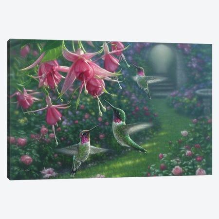 Hummingbird Haven, Horizontal Canvas Print #CBO36} by Collin Bogle Art Print