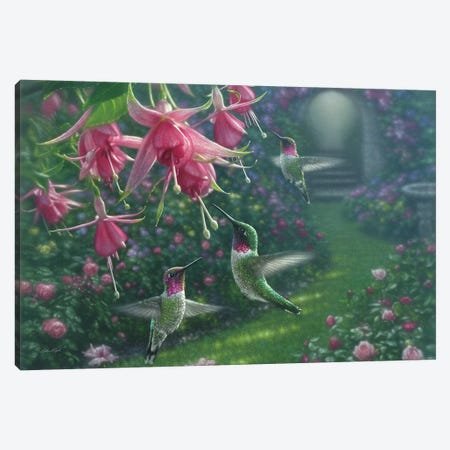 Hummingbird Haven, Horizontal Canvas Print #CBO36} by Collin Bogle Art Print