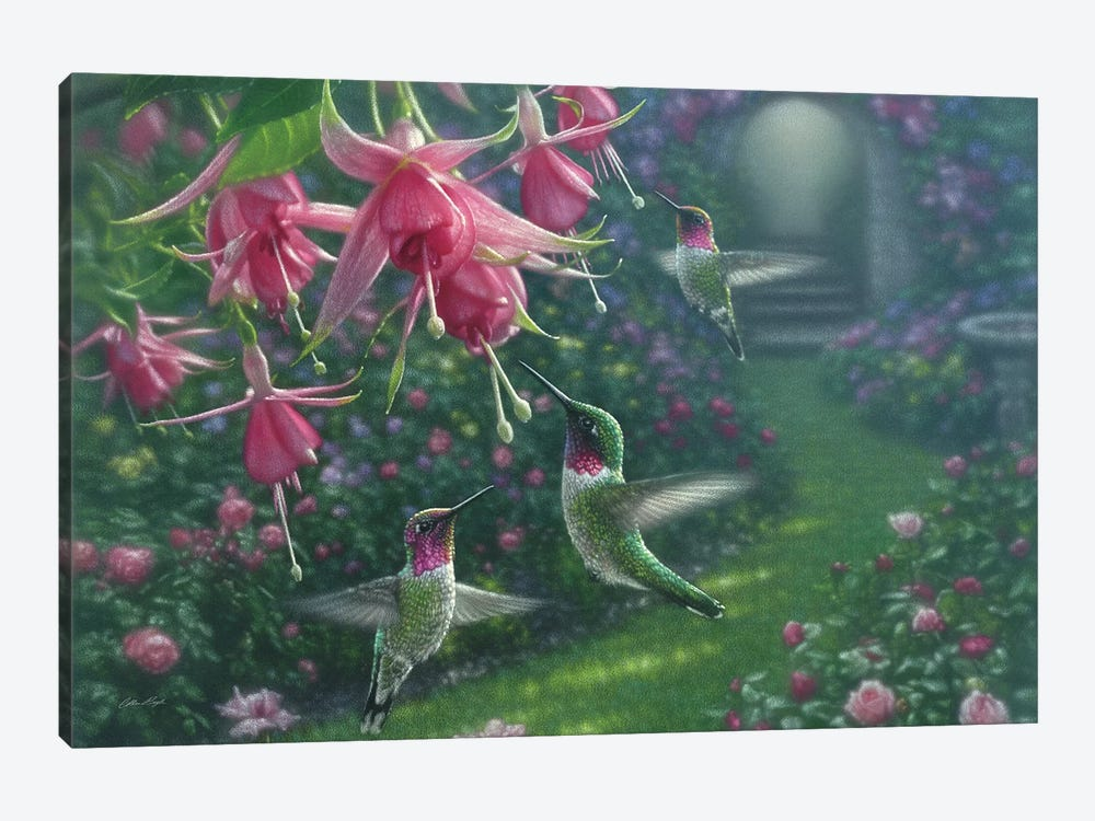 Hummingbird Haven, Horizontal by Collin Bogle 1-piece Canvas Art