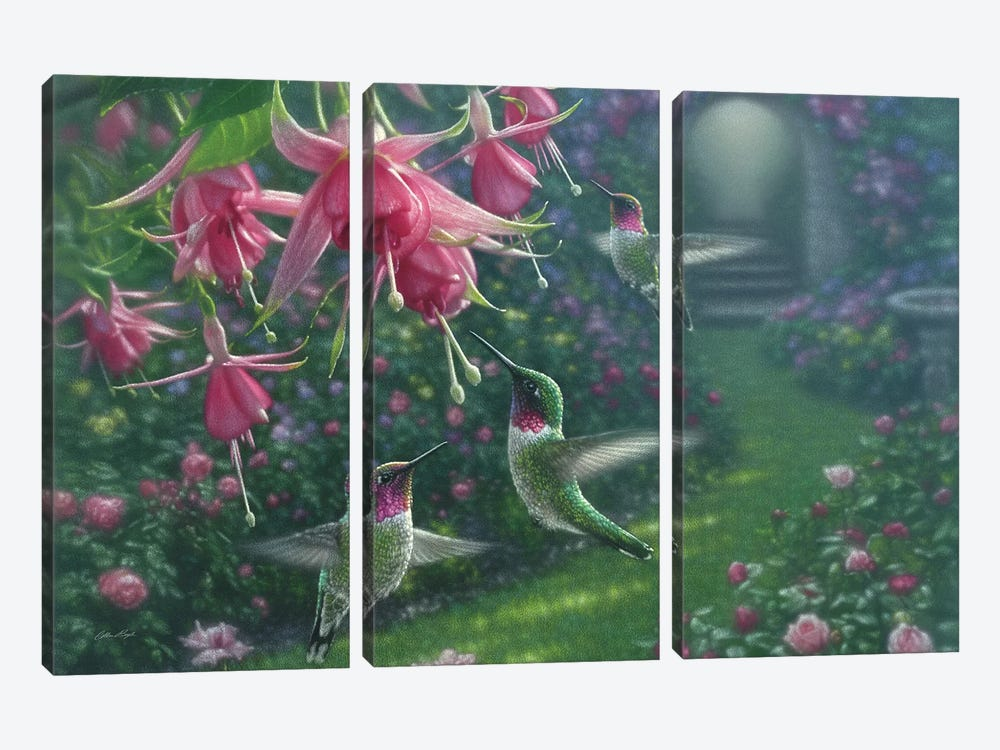 Hummingbird Haven, Horizontal by Collin Bogle 3-piece Canvas Wall Art