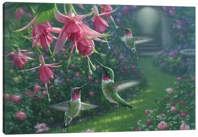 Hummingbird Haven, Horizontal Canvas Art Print
