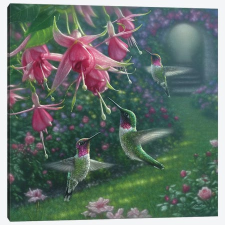 Hummingbird Haven, Square Canvas Print #CBO37} by Collin Bogle Canvas Print