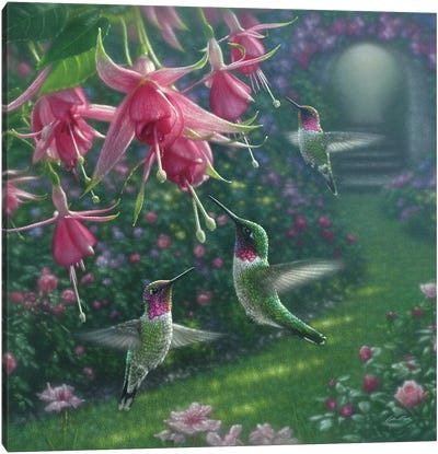 Hummingbird Haven, Square Canvas Art Print