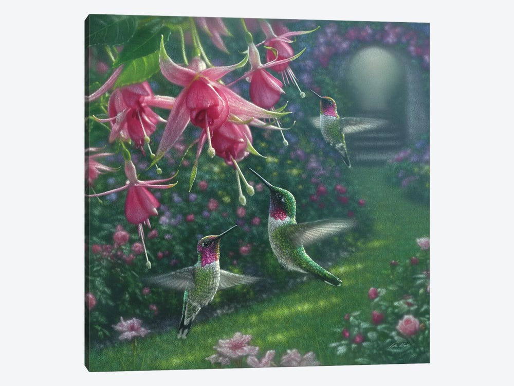 Hummingbird Haven, Square by Collin Bogle 1-piece Art Print