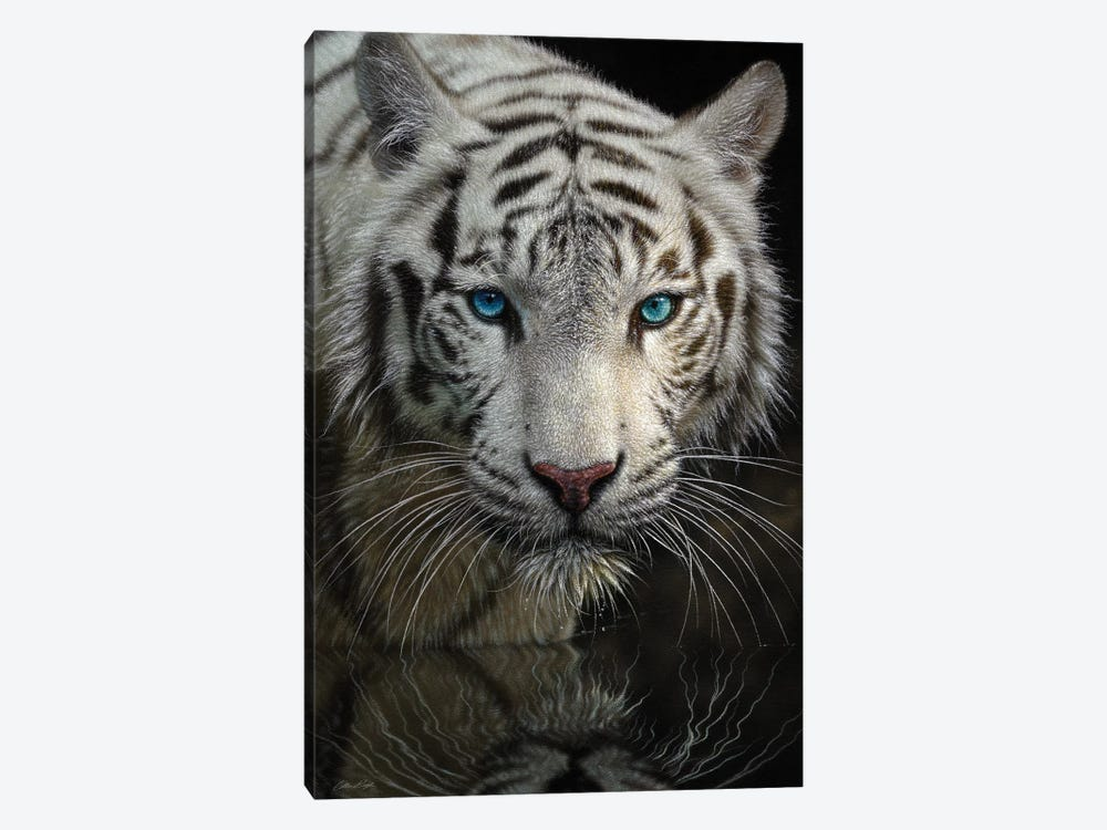Into The Light - White Tiger, Vertical by Collin Bogle 1-piece Art Print