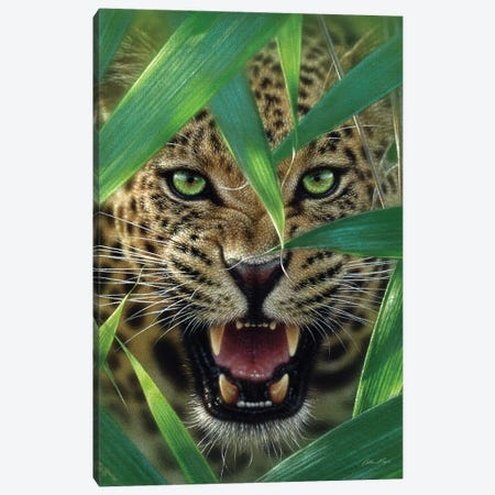 Jaguar Ambush, Vertical Canvas Print #CBO3} by Collin Bogle Canvas Wall Art