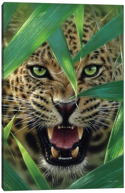 Jaguar Ambush, Vertical Canvas Art Print