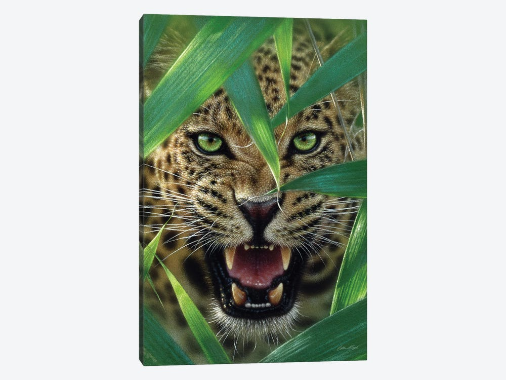 Jaguar Ambush, Vertical by Collin Bogle 1-piece Canvas Wall Art
