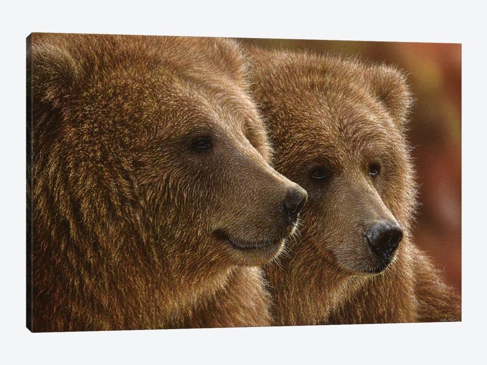 Lazy Daze - Brown Bears, Horizontal by Collin Bogle 1-piece Canvas Art