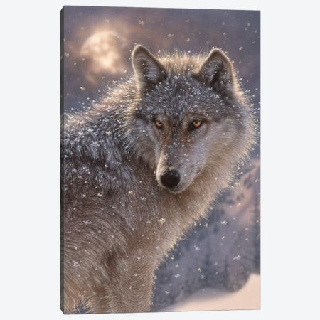 Lone Wolf, Vertical Canvas Print #CBO44} by Collin Bogle Canvas Art