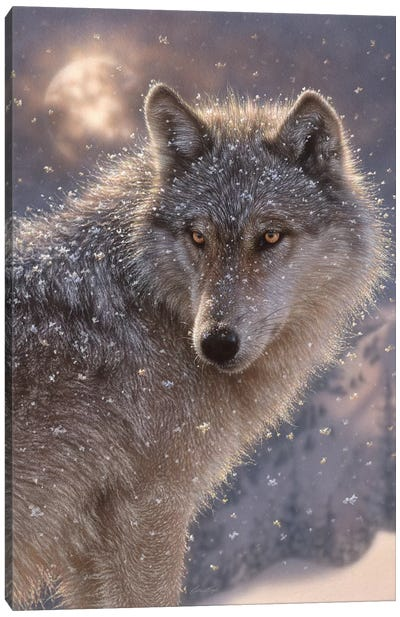 Lone Wolf, Vertical Canvas Art Print