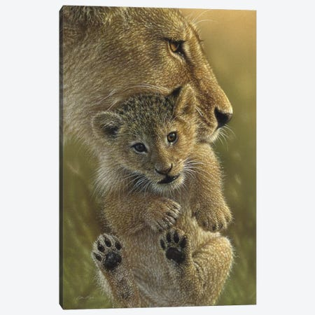 Mother's Pride - Lion, Vertical Canvas Print #CBO47} by Collin Bogle Canvas Wall Art