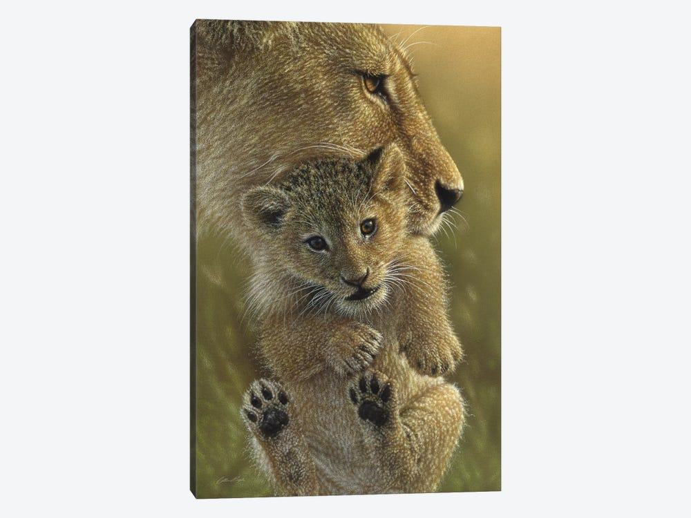 Mother's Pride - Lion, Vertical by Collin Bogle 1-piece Canvas Wall Art