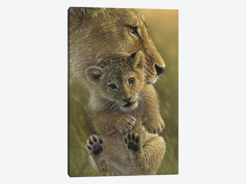 Mother's Pride - Lion, Vertical by Collin Bogle 1-piece Canvas Wall Art