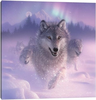 Northern Lights - Running Wolves, Square Canvas Art Print