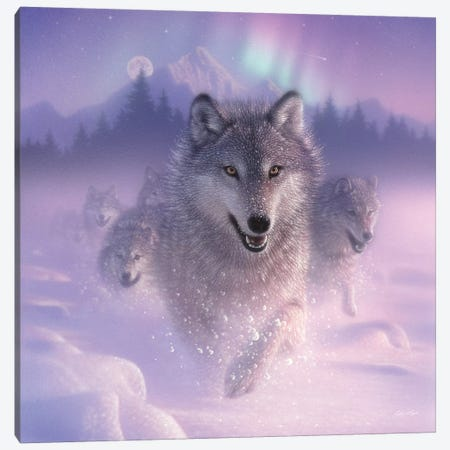 Northern Lights - Running Wolves, Square Canvas Print #CBO49} by Collin Bogle Art Print