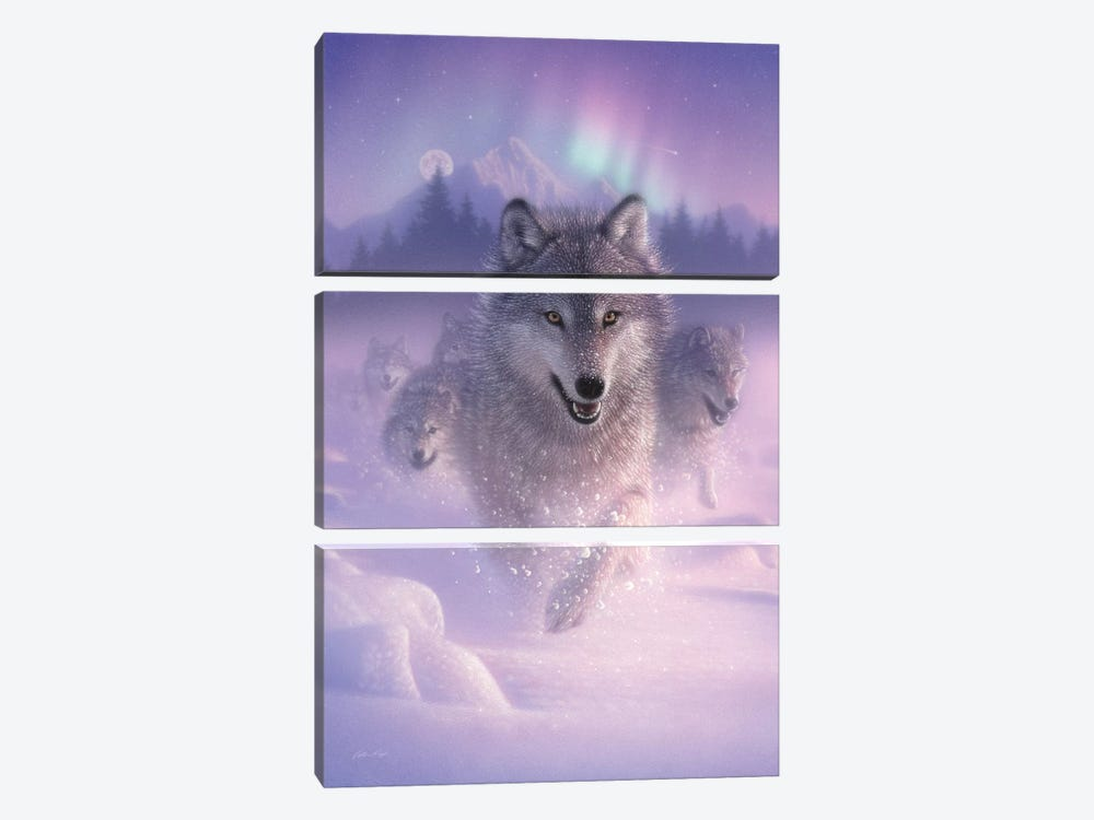Northern Lights - Running Wolves, Vertical by Collin Bogle 3-piece Canvas Wall Art