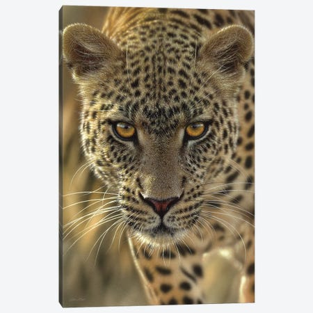 On The Prowl - Leopard, Vertical Canvas Print #CBO52} by Collin Bogle Canvas Art
