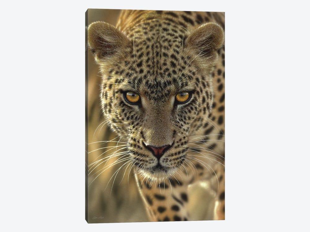On The Prowl - Leopard, Vertical by Collin Bogle 1-piece Canvas Artwork