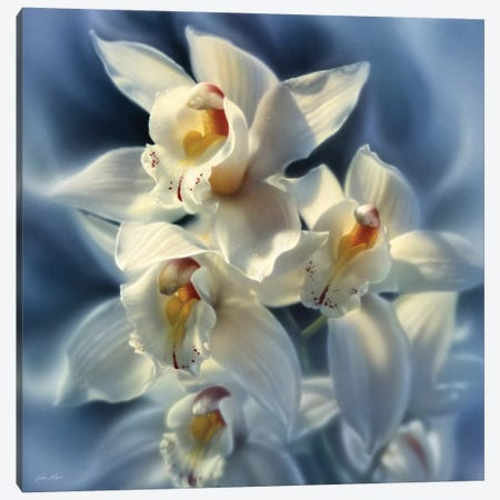 Orchids, Square Canvas Print #CBO53} by Collin Bogle Canvas Wall Art