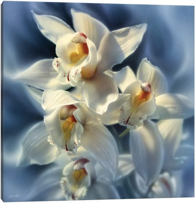 Orchids, Square Canvas Art Print