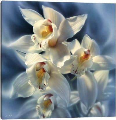 Orchids, Square Canvas Art Print