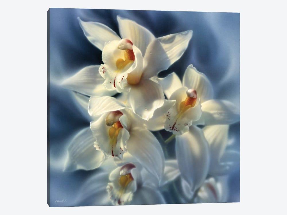 Orchids, Square by Collin Bogle 1-piece Art Print
