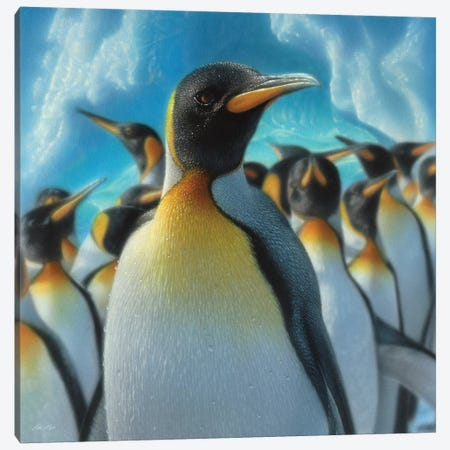 Penguin Paradise, Square Canvas Print #CBO56} by Collin Bogle Art Print