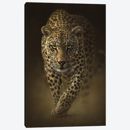 Savage Leopard, Vertical Canvas Print #CBO61} by Collin Bogle Art Print