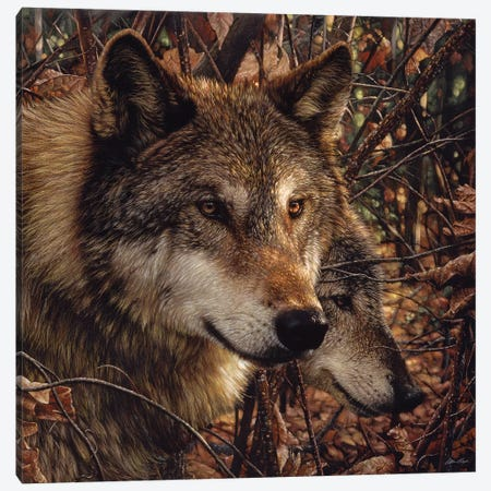 Autumn Wolves, Square Canvas Print #CBO6} by Collin Bogle Canvas Print