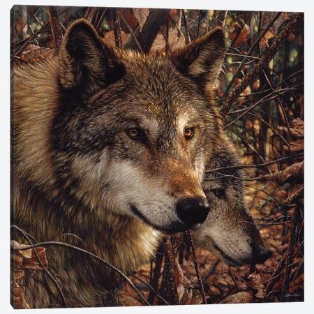 Autumn Wolves, Square Canvas Print #CBO6} by Collin Bogle Canvas Print