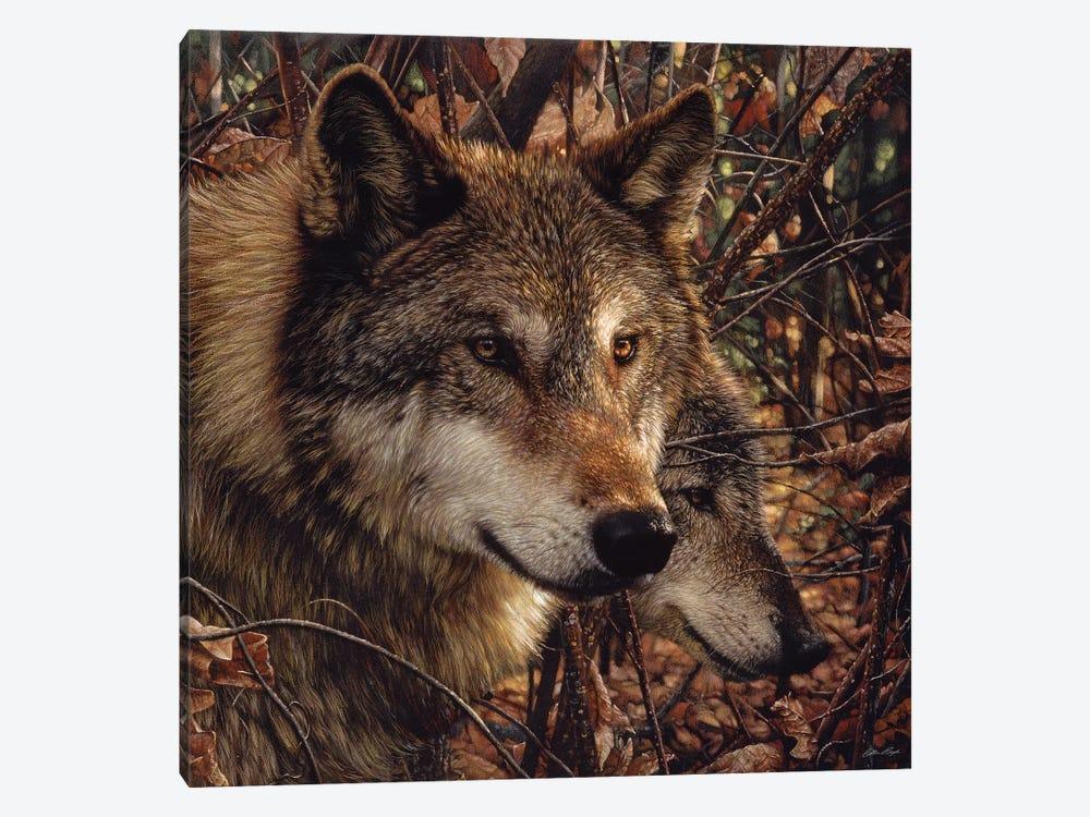 Autumn Wolves, Square by Collin Bogle 1-piece Art Print