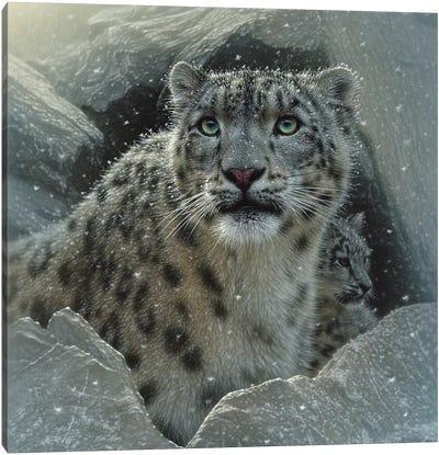 Snow Leopard Fortress, Square Canvas Art Print
