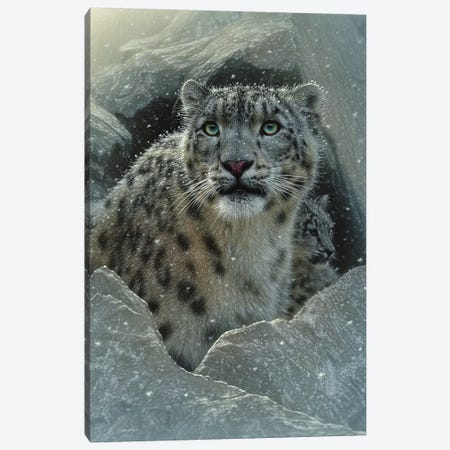 Snow leopard Fortress, Vertical Canvas Print #CBO73} by Collin Bogle Canvas Artwork
