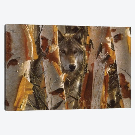 Wolf Guardian, Horizontal Canvas Print #CBO74} by Collin Bogle Canvas Art Print