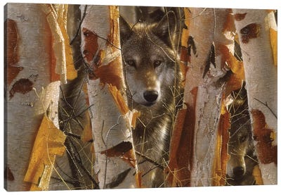 Wolf Guardian, Horizontal Canvas Art Print