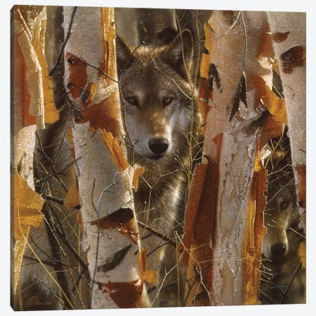 Wolf Guardian, Square Canvas Print #CBO75} by Collin Bogle Canvas Art Print