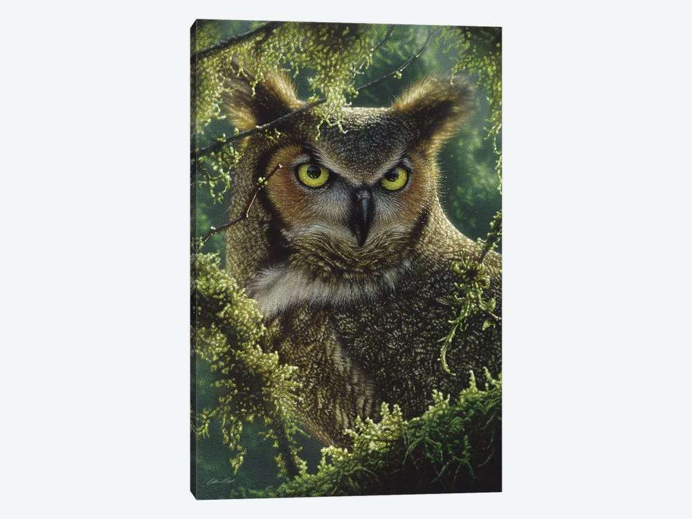 Watching And Waiting - Great Horned Owl, Vertical by Collin Bogle 1-piece Canvas Art